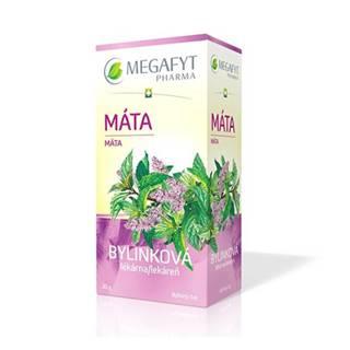 MEGAFYT Bylinková lekáreň mäta 20 x 1,5 g