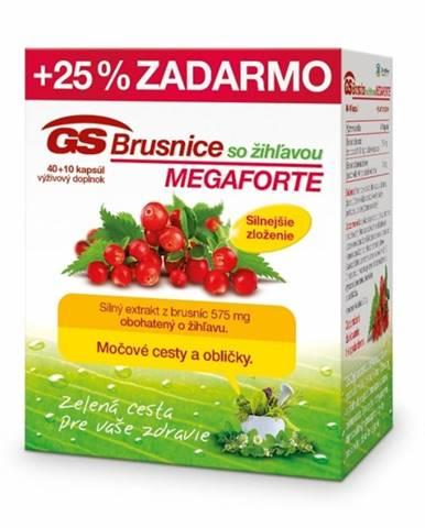 GS Brusnice MEGAFORTE