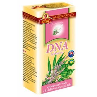 AGROKARPATY DNA bylinný čaj 20x2 g (40 g)