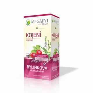 MEGAFYT Bylynková lekáreň Dojčenie porciovaný čaj 20x1,5g